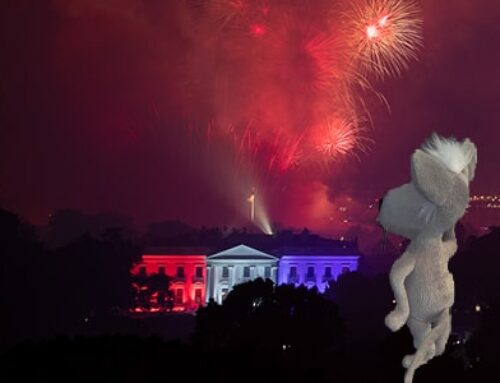 4 Ways to Celebrate the Fourth of July