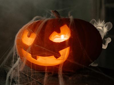 Martin the Mouse Halloween Children's Book DIY Jack-O'-Lantern Blog Tutorial