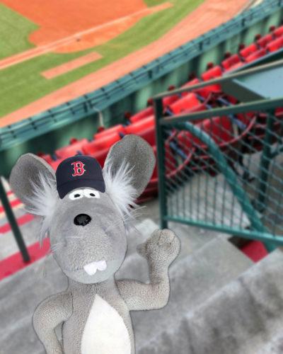 Martin the Mouse Blog - Martin at the Baseball Field