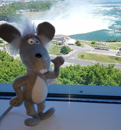 Martin at Niagara Falls